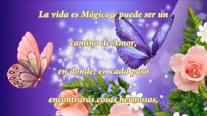 La vida es mágica